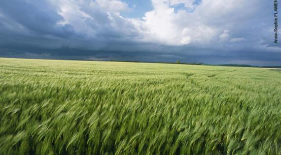 Hauts-de-France Bienvenue à la ferme