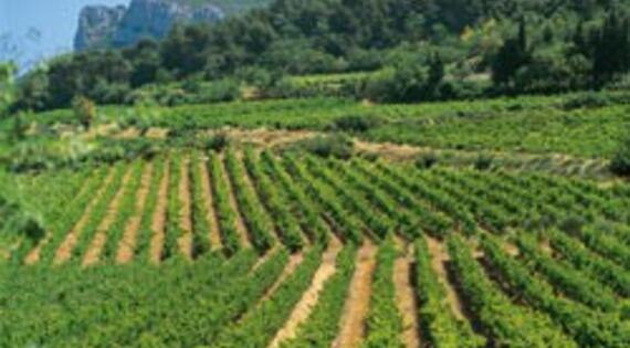 Bienvenue à la ferme Provence Alpes Côte D'Azur
