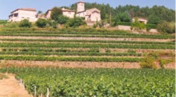 Territoire Ardèche méridionale