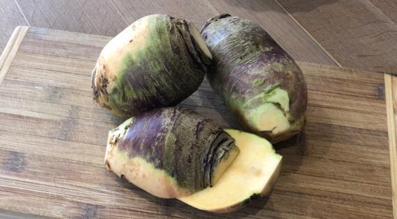 Rutabaga légume de saison Bienvenue à la ferme