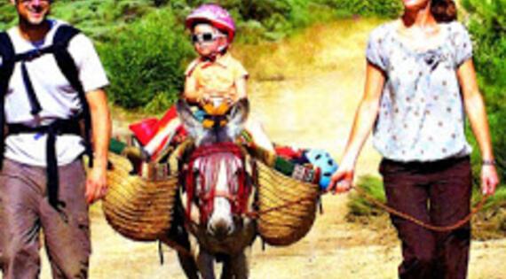 Asinerie Badjane Gard balade âne Bienvenue à la ferme