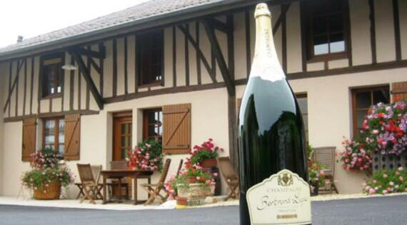 Accueil chez le vigneron La Chaussée sur Marne
