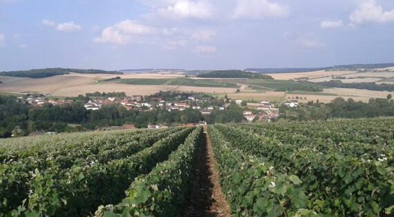 Village de Champagne Passy Grigny