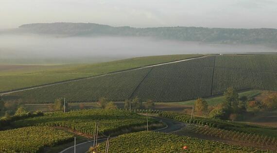 Village viticole Côteaux Sézannais à Broyes