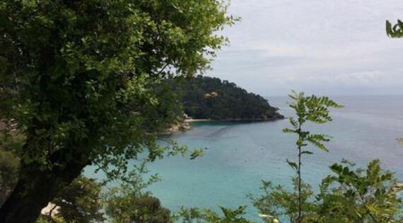 Ancienne Voie chemin de Fer Golfe de St Tropez