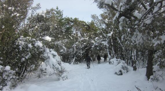 Parc Naturel Régional du Verdon sous la neige Crédit Photo AV