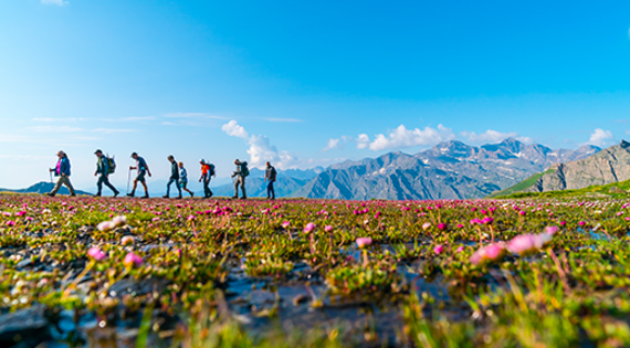 Balade dans les Hautes-Alpes © ADDET 05