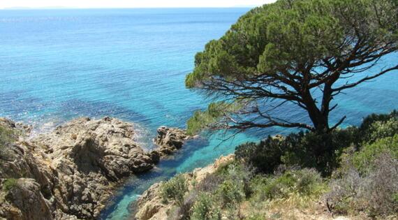 Golfe Saint Tropez - Crédit Photo AE (CA83)