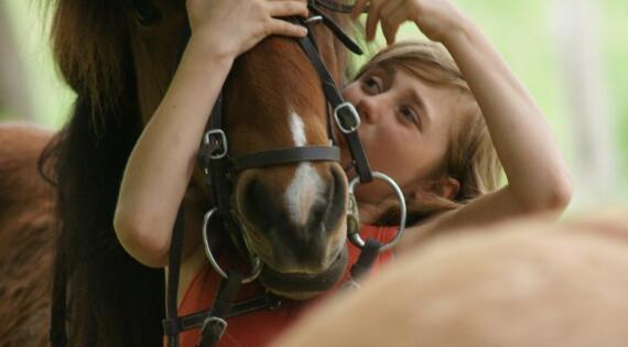 s'occuper de son poney