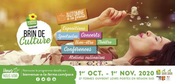 Festival BRIN DE CULTURE 2020