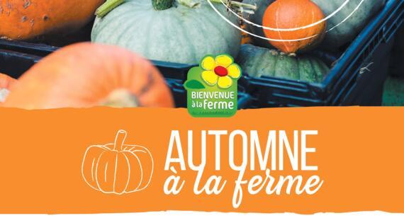 Logo automne à la Ferme