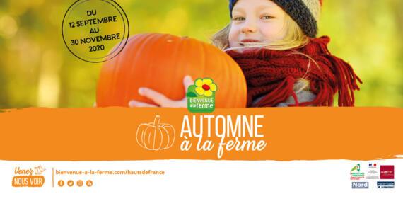 Automne à la ferme en Hauts-de-France 2020