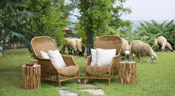 Appel à projet agritourisme Bienvenue à la ferme Miimosa Airbnb