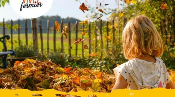 Visuel automne