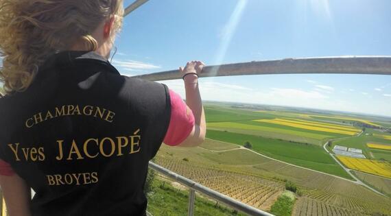 Vue vignoble et champs Champagne JACOPE