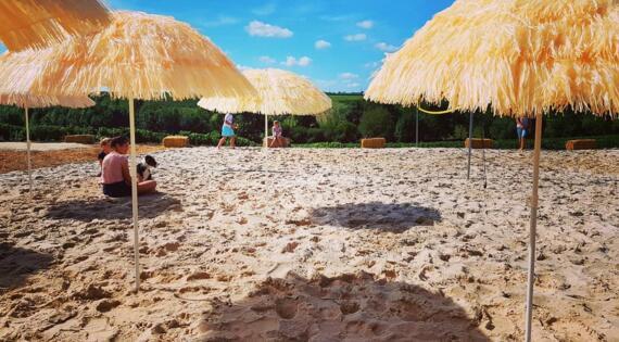 Une vraie plage de sable avec vue sur les vignes !