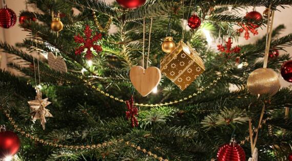 Acheter son sapin de Noël à la ferme