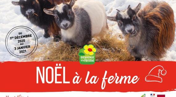 Noël à la ferme Hauts-de-France 2020