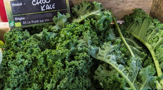 Chou kale produit de saison légume automne hiver Bienvenue à la ferme