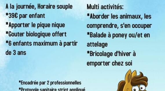 stage poney et animaux de la ferme