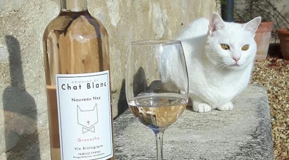 Domaine du Chat Blanc