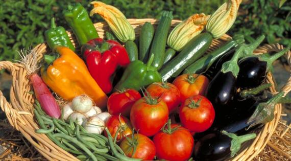 Fruits légumes MPP La Seyne
