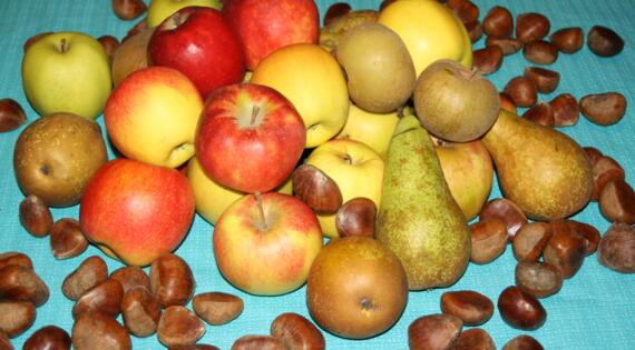 Fruits de la ferme