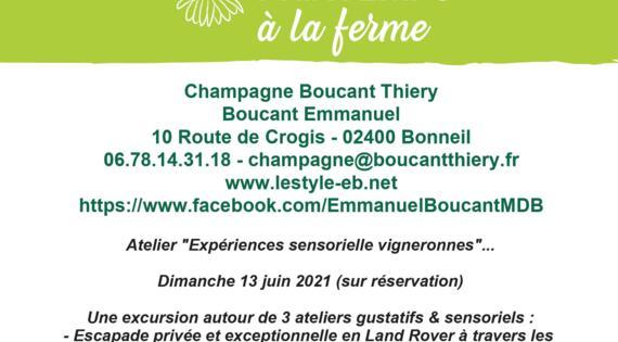 Champagne Boucant juin