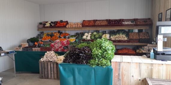 torchy légumes