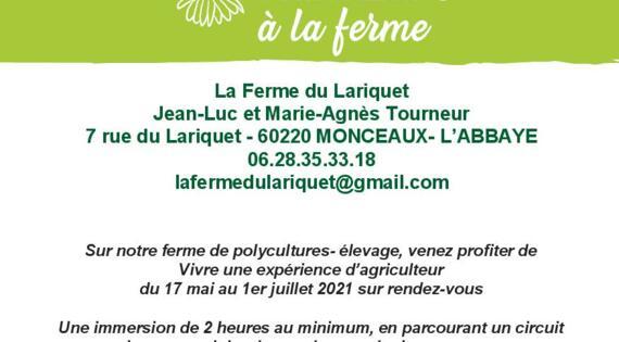 Printemps Ferme du Lariquet