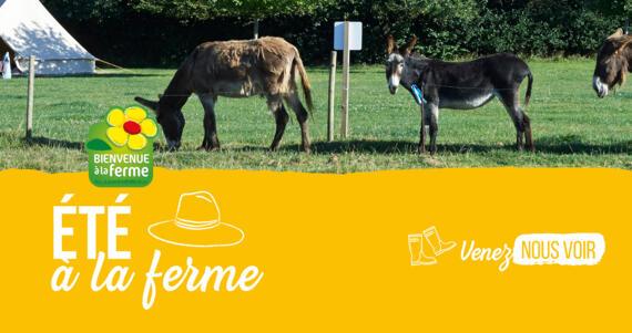 Vos vacances en toute simplicité en Pays de la Loire