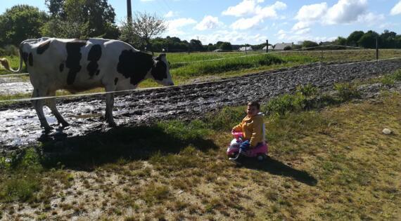 La vache et l'enfant