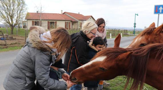 Les enfants carressent le cheval de la ferme Dartoy