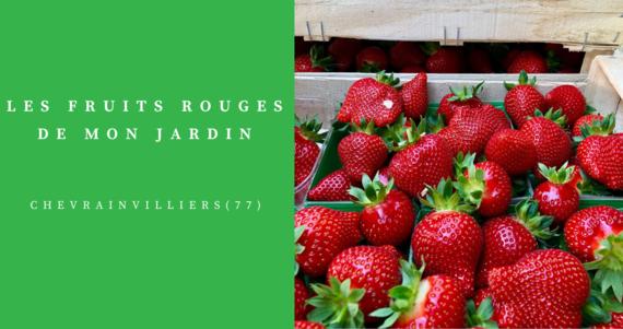 fermes les fruits rouges de mon jardin