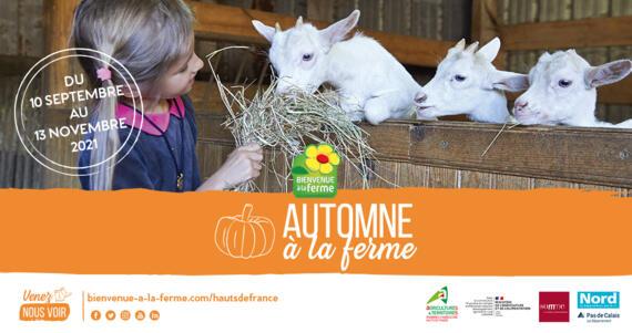 Automne à la ferme en Hauts-de-France